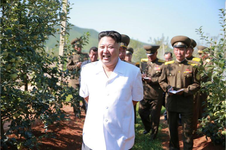 160818 - 조선의 오늘 - KIM JONG UN - Marschall KIM JONG UN besuchte das Obstbaukombinat Taedonggang - 05 - 경애하는 김정은동지께서 대동강과수종합농장을 현지지도하시였다
