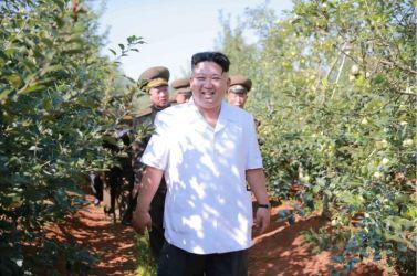 160818 - 조선의 오늘 - KIM JONG UN - Marschall KIM JONG UN besuchte das Obstbaukombinat Taedonggang - 07 - 경애하는 김정은동지께서 대동강과수종합농장을 현지지도하시였다