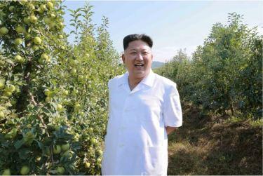 160818 - 조선의 오늘 - KIM JONG UN - Marschall KIM JONG UN besuchte das Obstbaukombinat Taedonggang - 08 - 경애하는 김정은동지께서 대동강과수종합농장을 현지지도하시였다