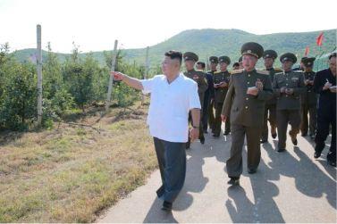 160818 - 조선의 오늘 - KIM JONG UN - Marschall KIM JONG UN besuchte das Obstbaukombinat Taedonggang - 09 - 경애하는 김정은동지께서 대동강과수종합농장을 현지지도하시였다