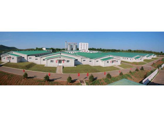 160818 - RS - KIM JONG UN - Marschall KIM JONG UN besichtigte den Schweinezuchtbetrieb Taedonggang - 03 - 경애하는 김정은동지께서 대동강돼지공장을 현지지도하시였다