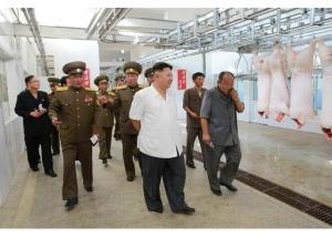 160818 - RS - KIM JONG UN - Marschall KIM JONG UN besichtigte den Schweinezuchtbetrieb Taedonggang - 05 - 경애하는 김정은동지께서 대동강돼지공장을 현지지도하시였다