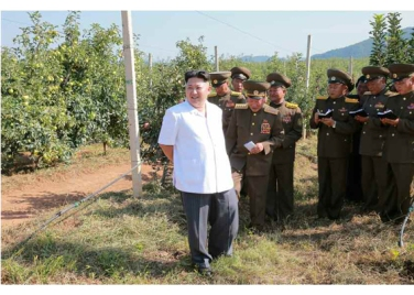 160818 - RS - KIM JONG UN - Marschall KIM JONG UN besuchte das Obstbaukombinat Taedonggang - 02 - 경애하는 김정은동지께서 대동강과수종합농장을 현지지도하시였다