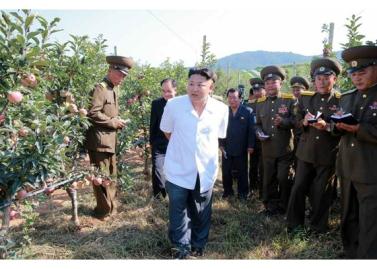 160818 - RS - KIM JONG UN - Marschall KIM JONG UN besuchte das Obstbaukombinat Taedonggang - 03 - 경애하는 김정은동지께서 대동강과수종합농장을 현지지도하시였다