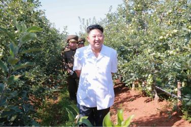 160818 - SK - KIM JONG UN - Marschall KIM JONG UN besuchte das Obstbaukombinat Taedonggang - 경애하는 김정은동지께서 대동강과수종합농장을 현지지도하시였다