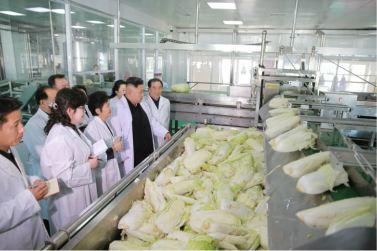 170112-%ec%a1%b0%ec%84%a0%ec%9d%98-%ec%98%a4%eb%8a%98-kim-jong-un-genosse-kim-jong-un-besichtigte-die-kimchi-fabrik-ryugyong-02-%ea%b2%bd%ec%95%a0%ed%95%98%eb%8a%94-%ec%b5%9c%ea%b3%a0